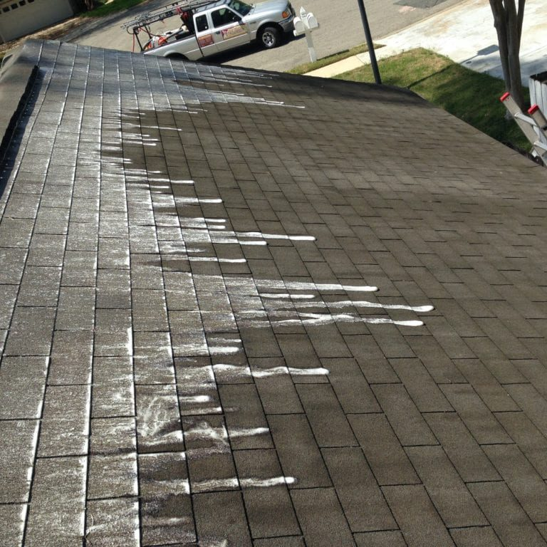 Roof Cleaning Tallahassee FL